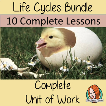 Animal Life Cycles Complete Unit Lesson Bundle
