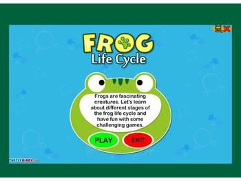 Animal Life Cycles Flipchart