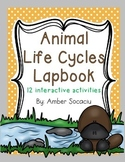 Animal Life Cycles Lapbook