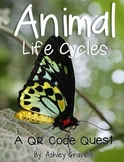 Animal Life Cycles: QR Quest
