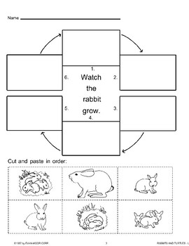 animal life cycles rabbits 813001 lessons and worksheets on rabbits. Black Bedroom Furniture Sets. Home Design Ideas