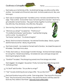 Animal Life Cycles Reading Passages : White-Tailed Deer and Butterfly