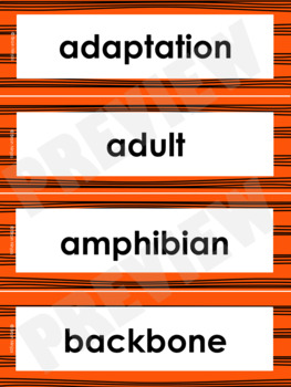 Animal Life Cycles Word Wall Words- Editable