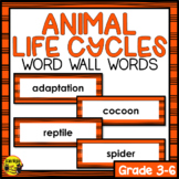 Animal Life Cycles Word Wall Words- Editable