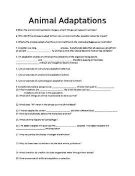 Animal Life In Action: Animal Adaptations Video Worksheet