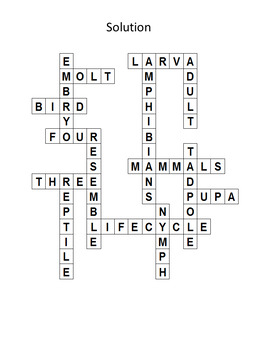 Animal Lifecycles Review Crossword Puzzle and Key