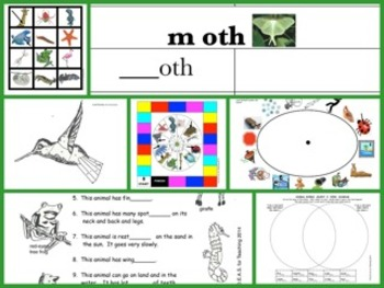 Animal Literacy Bundle:  7 First Grade Language Arts Activities (CCSS Aligned)