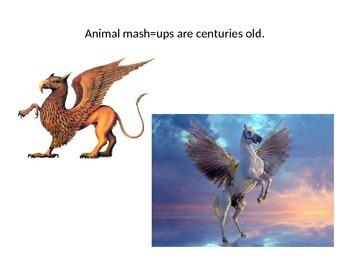 Animal Mash-Up Powerpoint