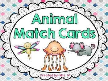 Animal Match Cards