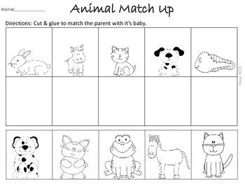 Animal Match Up