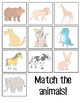 Animal Matching Activity