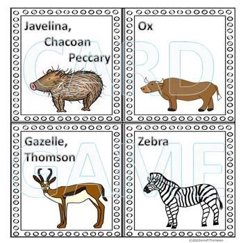 Animals: Memory Game (Set Two)