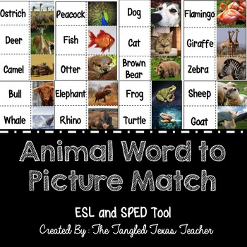Animal Word to Picture Match (SPED and ESL Tool)