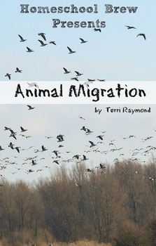 Animal Migration (Fourth Grade Social Science Lesson)