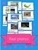 Animal Movement ELA Book and Activities