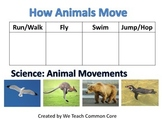 Animal Movement How Animals Move Science Station Activity
