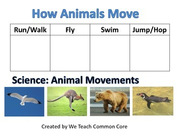animal movement how animals move science station activity by treasured teaching. Black Bedroom Furniture Sets. Home Design Ideas