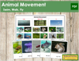 Animal Movement: Swim, Walk or Fly? - Sorting Cards & Cont
