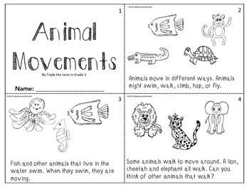 Animal Movements