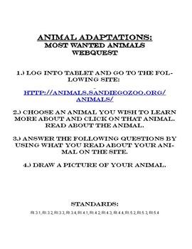 Animal Needs & Adaptations: Most Wanted Animals Webquest