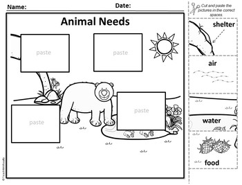 Animal Needs - Puzzle Parts & Labeling Activity (Bear)