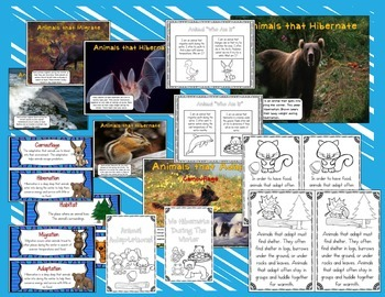 Animal Needs and Winter Adaptations (Hibernate, Migrate, Adapt) Unit