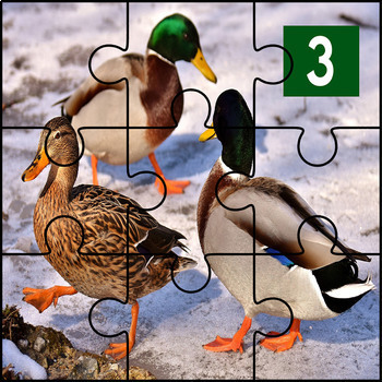 Animal Numbers: Puzzle Printables