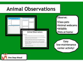 Animal Observations - Center Activity