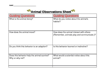 Animal Observations Science Sheet