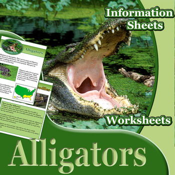 Animal Outlines: Alligators