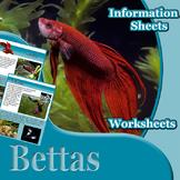 Animal Outlines: Bettas