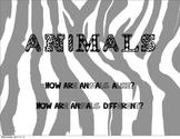 Animal PDF PowerPoint