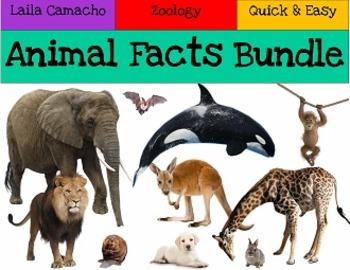 Animal Facts BUNDLE