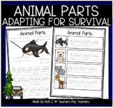 Identifying, Labeling and Learning about the Importance of Animal Parts