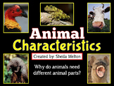 Animal Characteristics PowerPoint
