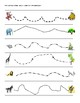 Animal Paths Activity