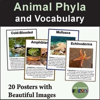 Animal Phlya Posters