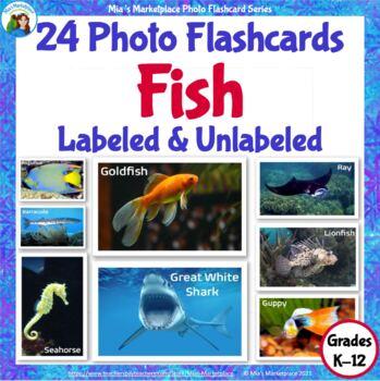 Animal Photo Flashcards: Fish