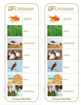 """Animal Picture Dictionary & Word Bank (Portable """"Word Wall"""")"""