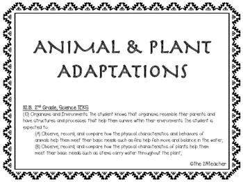 Animal/ Plant Adaptations and Habitats