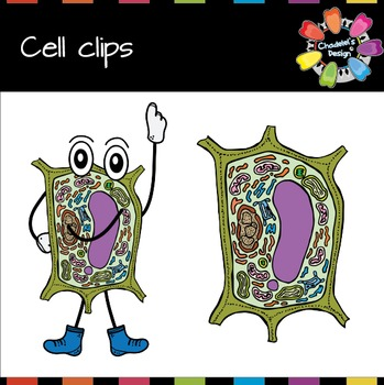 Animal & Plant Cell Clips