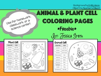 Animal and Plant Cell Match and Color Pages FREEBIE