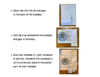 Animal & Plant Cells Interactive Notebook Activity