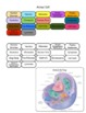 Science Pack 4  {Animal & Plant Cells}