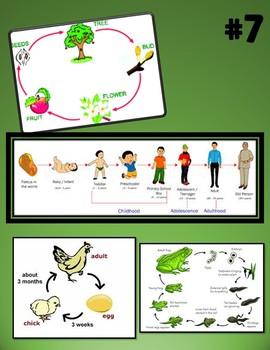Pearson Science 5th grade Animal & Plant Growth & Survival Gallery Walk