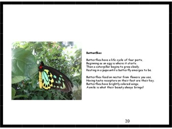 Animal Poetry EBooks Bundle