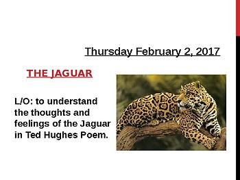 Animal Poetry Jaguar comparison writing