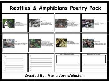 Animal Poetry Packs Bundle