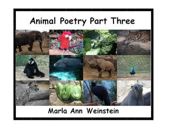 Animal Poetry Part Three
