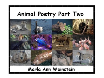 Animal Poetry Part Two